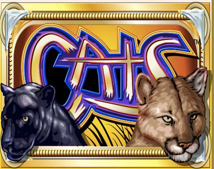 Cats slot review 2020
