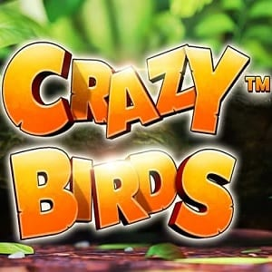 Crazy Bird Slot Review